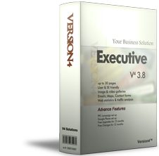 Website package: V4 3.8 Executive